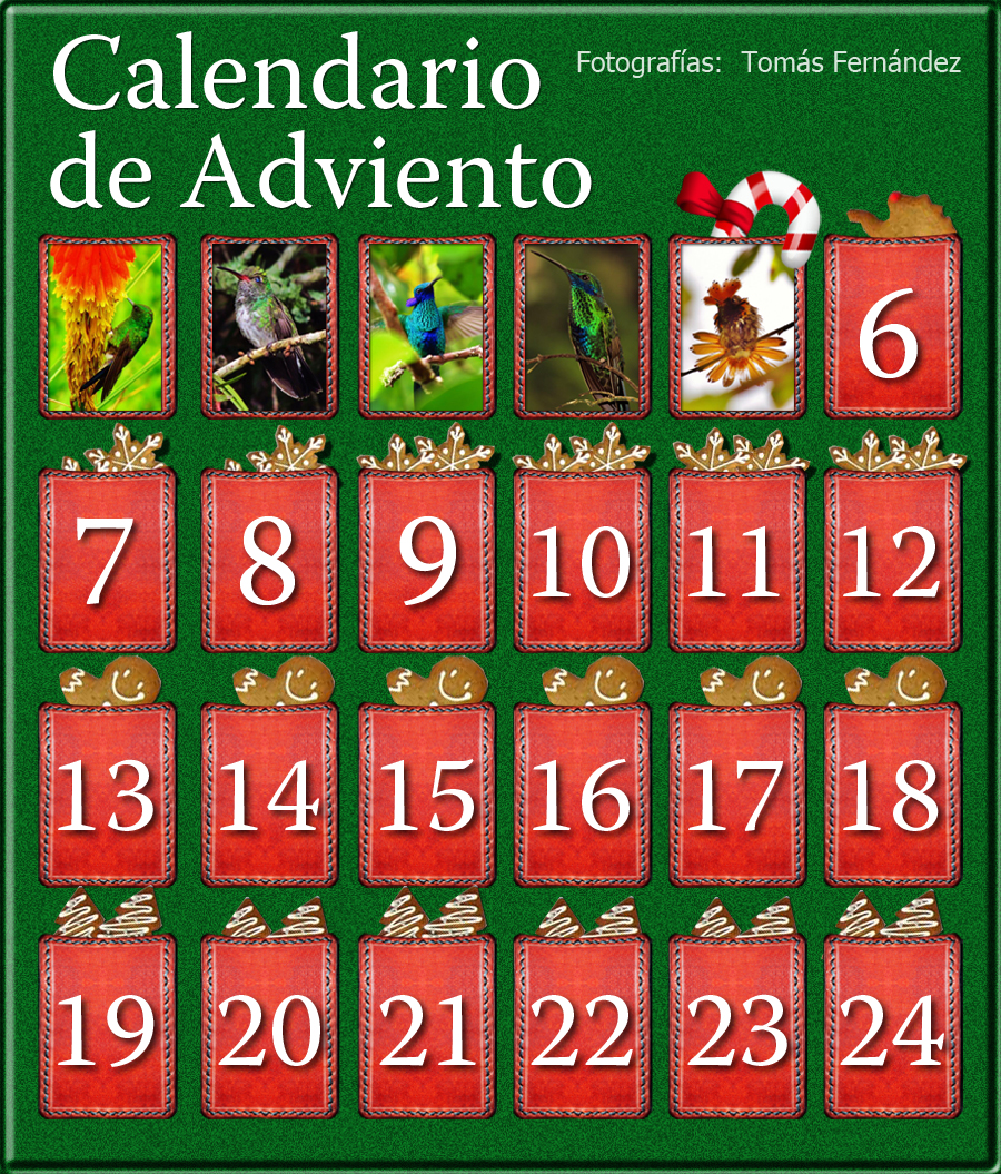 CalendarioAdvientoD5