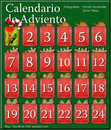 CalendarioAdvientoDia1