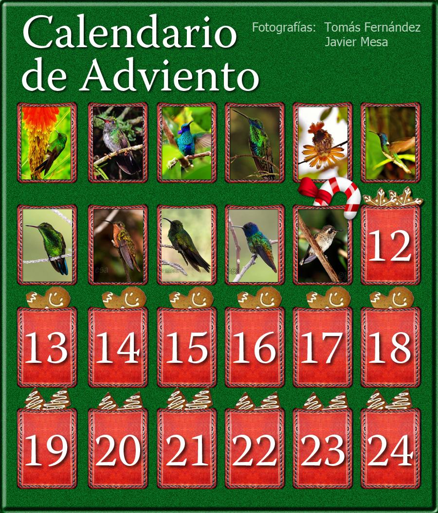 CalendarioAdvientoDia11