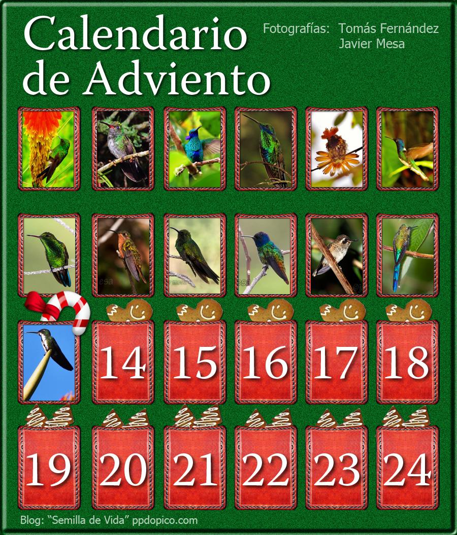 CalendarioAdvientoDia13