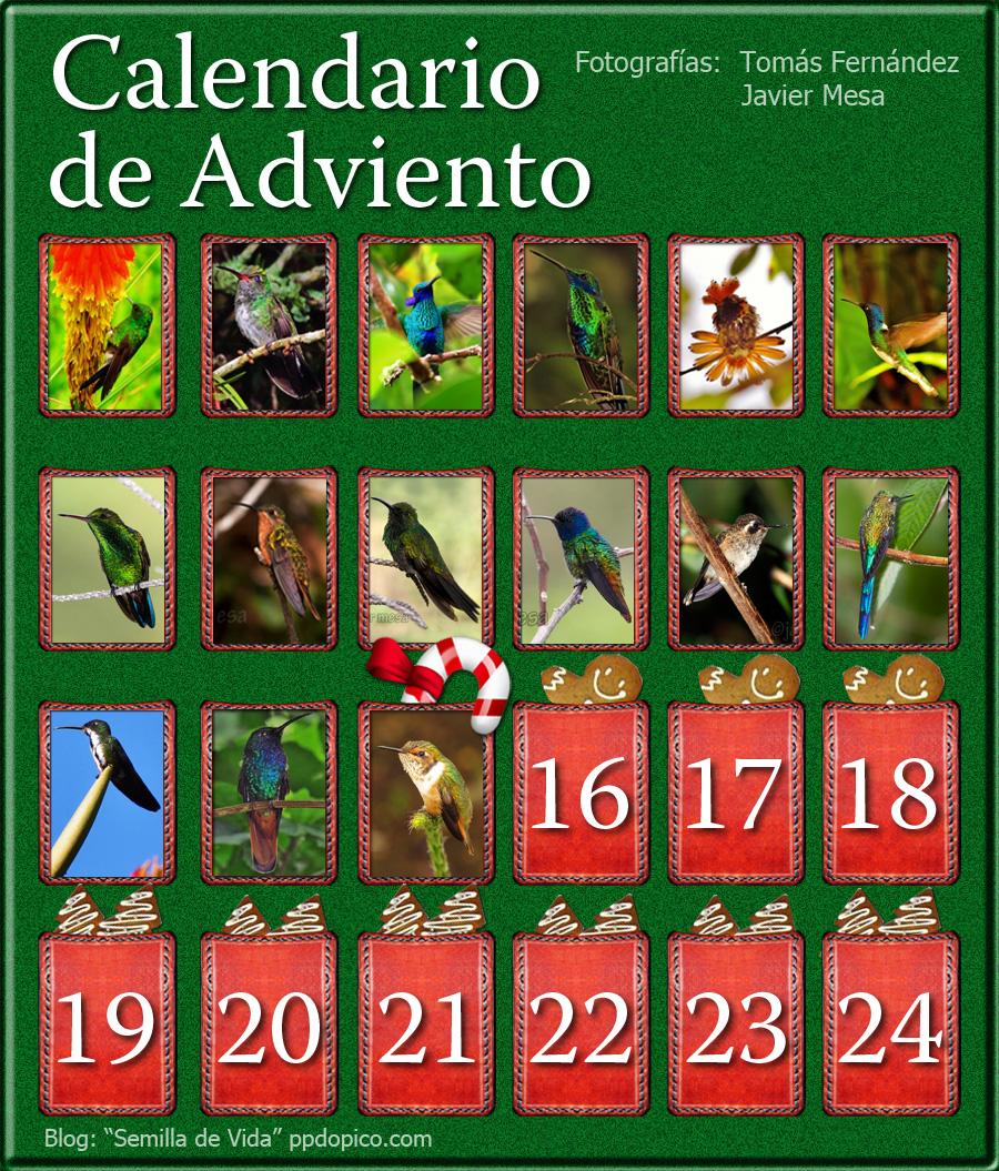 CalendarioAdvientoDia15