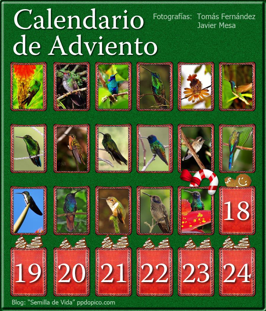 CalendarioAdvientoDia17