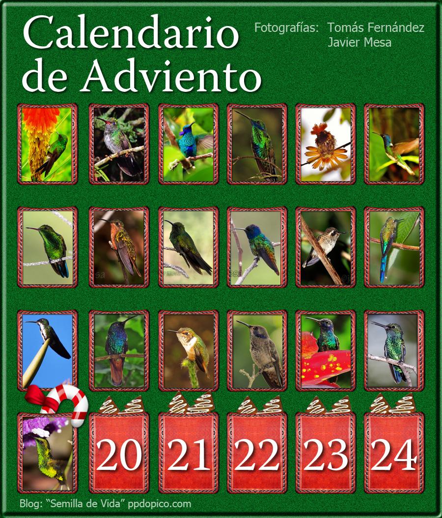 CalendarioAdvientoDia19