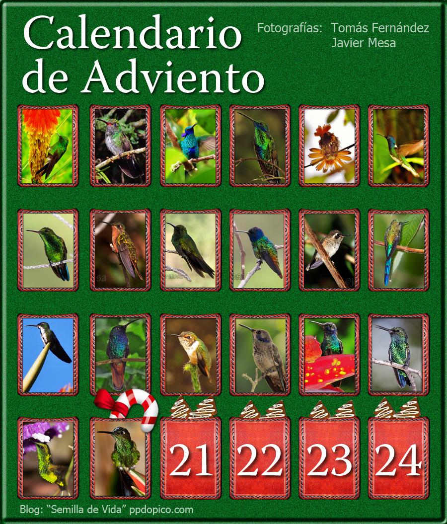 CalendarioAdvientoDia20