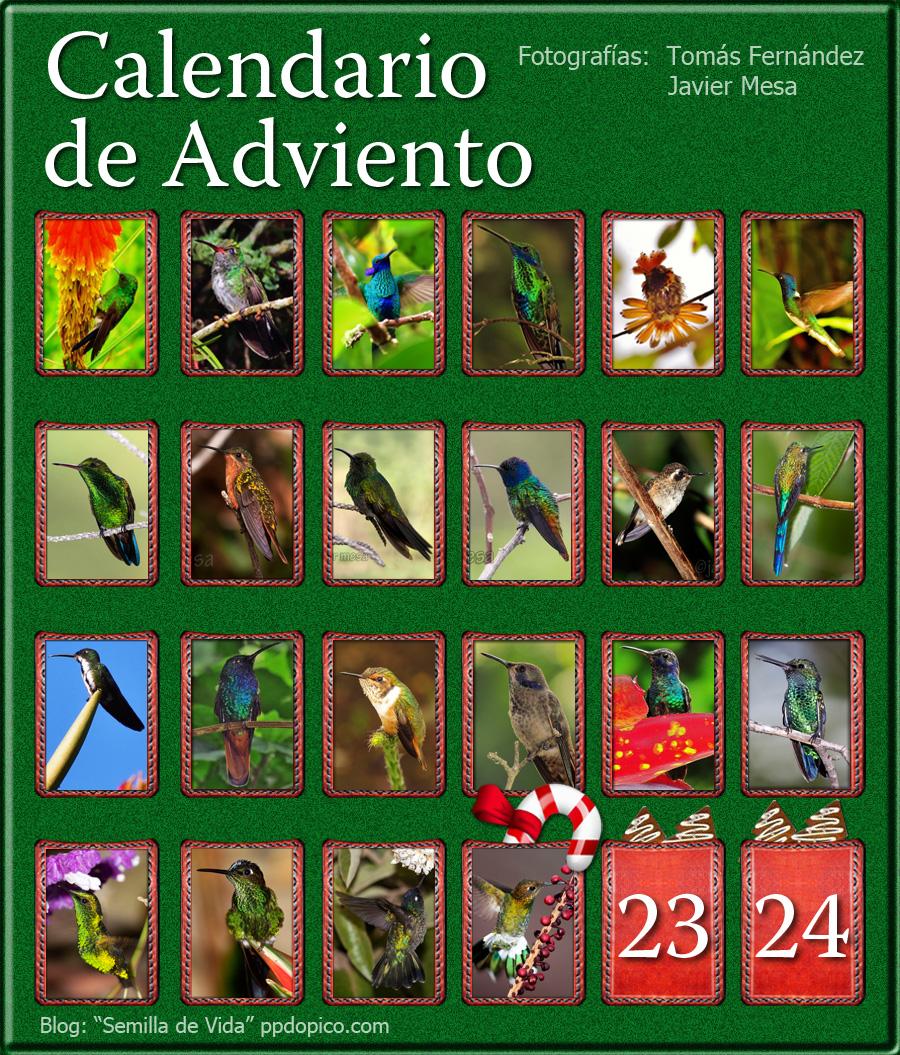 CalendarioAdvientoDia22