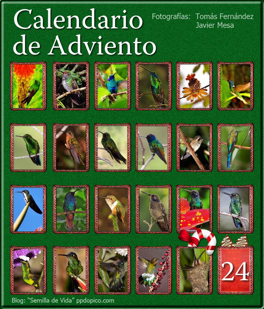 CalendarioAdvientoDia23