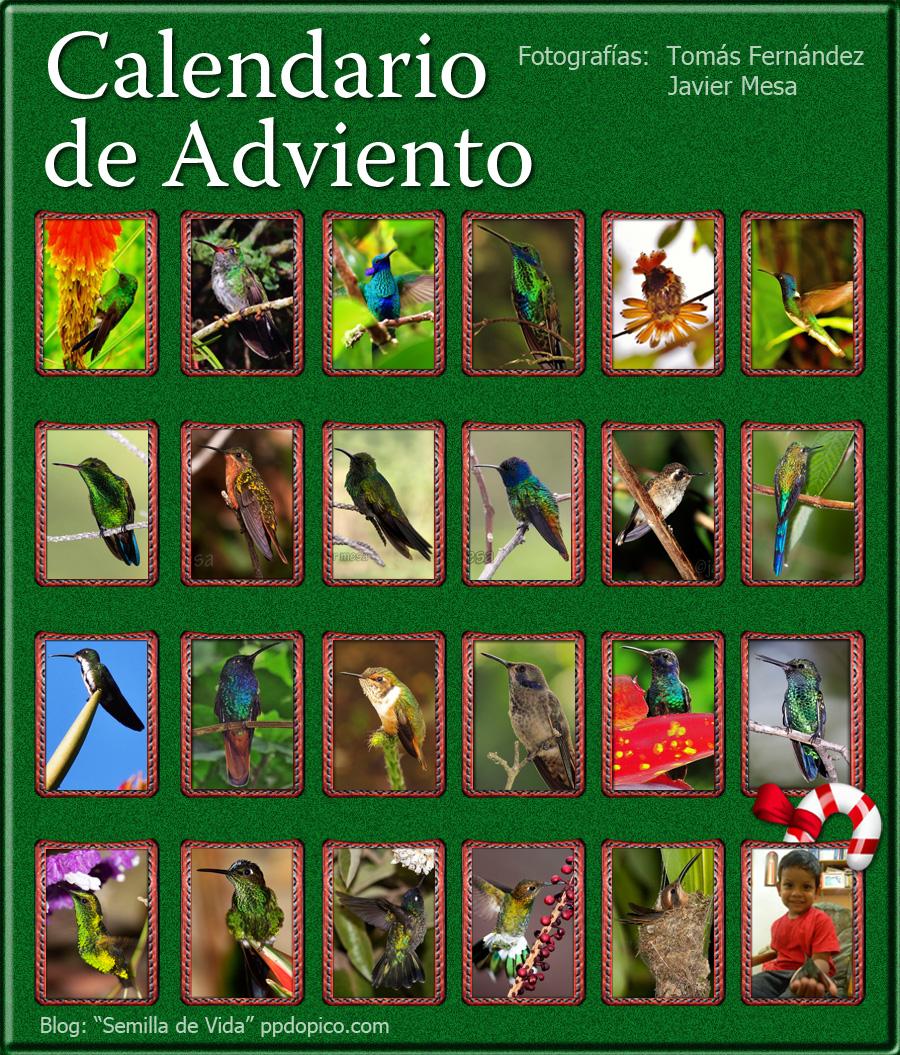 CalendarioAdvientoDia24