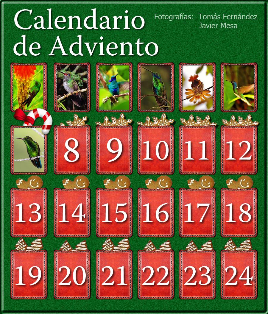 CalendarioAdvientoDia7