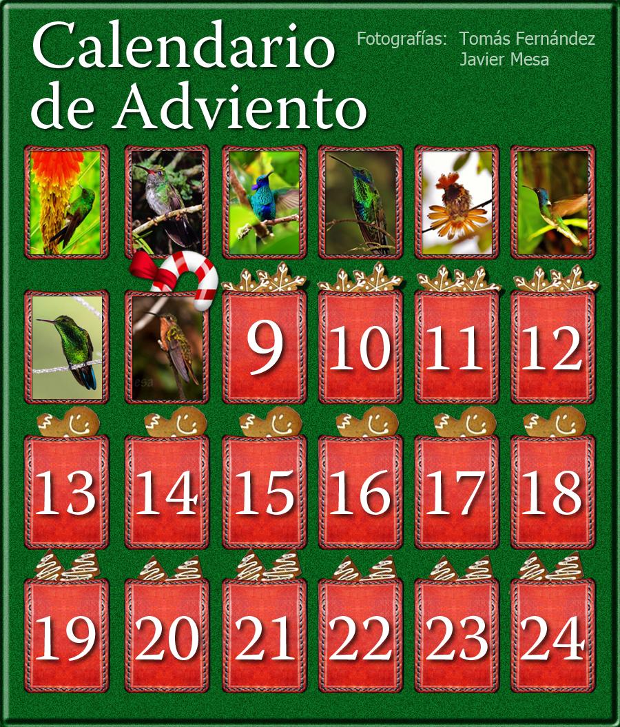 CalendarioAdvientoDia8