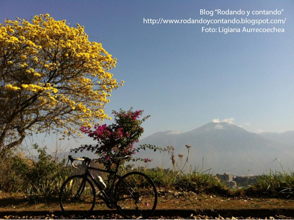 blogger-image-1672587361 copy