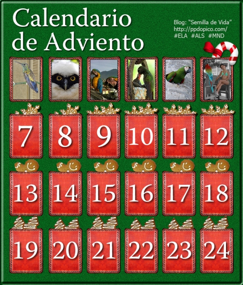 CalendarioAdviento2013Dia06