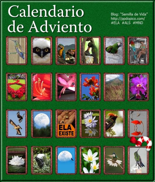 CalendarioAdviento2013Dia24