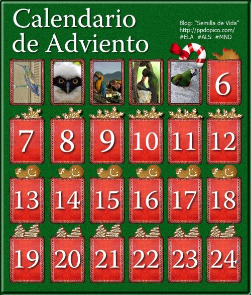 CalendarioAdvientoDia05