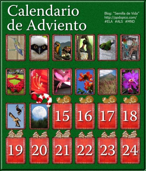 CalendarioAdvientoDia14