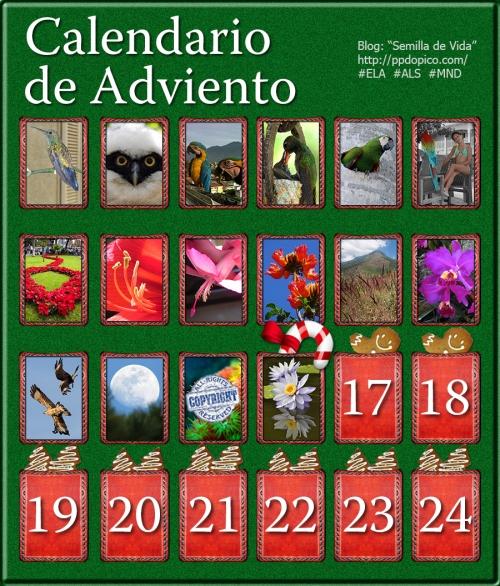 CalendarioAdvientoDia16