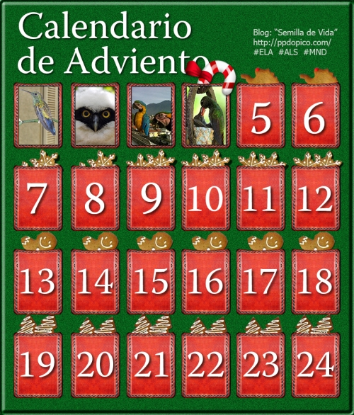 CalendarioAviento2013#04