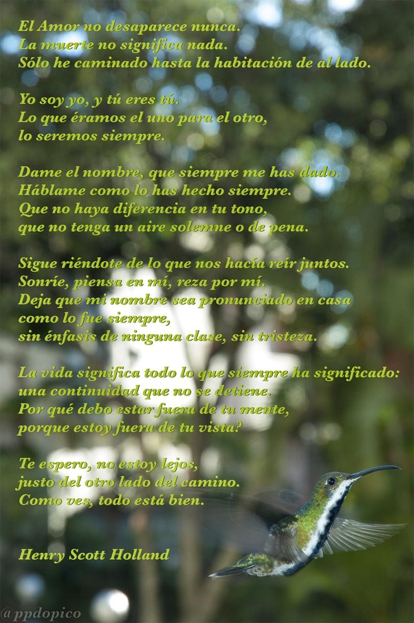 PoemaHSH