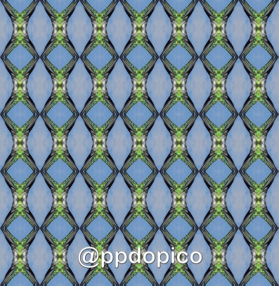Simetria 2016 0510 8615Nº01sdv