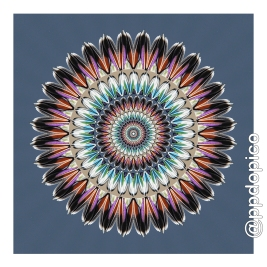 simetria2016-0817-6355no02c01csc-34x34