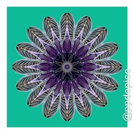simetria2016-0817-6417no02csc-27x27